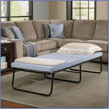 Roll Away Beds Sears by Foldaway Guest Bed Sears Home Design Ideas