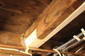 Sistering Floor Joists With Plywood by Fixing A Damaged Floor Joist Extreme How To