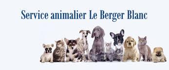 le berger blanc animal shelters 9825 boulevard henri bourassa