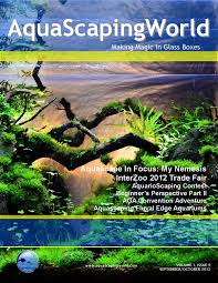 AquaScaping World Magazine September/October 2012 By John_N - Issuu Hamsa Wabikusa Style Aquascaping World Forum Httpwww Nature Aquarium And Aquascaping Wiki 25l Nano Capa 2011 French Aquascapers Results My Scape Iaplc Rank 70 The Passing Of Legend Takashi Amano Magazine With Nicolas Guillermin Surreal Submarine Amuse Aquascape The Month August 2010 Beyond Riccardia Chamedryfolia Question This Is Ada 2009 Susanna Aquascape Garden Bonsai Plants