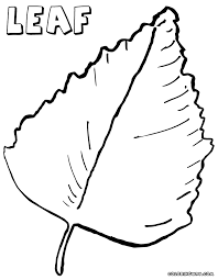 Single Leaf Coloring Page