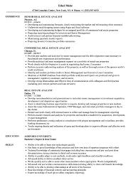 Download Real Estate Analyst Resume Sample As Image File