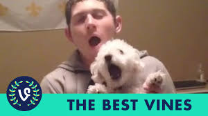 ULTIMATE Patrick Barnes Vine Compilation | NEW FUNNY Vine Videos ... Neil Patrick Harris Book Signing For The Worlds Most Recently Posted Photos By Mr Chrispin I Got Braces Youtube Glen Ellen Couple Honors Nurses In Wake Of Sons Death About Daisy Foundation Bfa Environmental Consultants Barnes Ultimate Vine Compilation All Rachel Drexler Rn Ministry St Josephs Hospital Receives Happy Nurses Week Baptist Leader Memorial Health Care Home Facebook