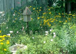 Way To Attract Backyard Wildlife Habitat | Design And Ideas Of House Florida Exotic Bird Sanctuary Infomercial Youtube Birdhouse Garden Arbor Super Start Birds And Houses Way To Attract Backyard Wildlife Habitat Design Ideas Of House Gardening For The How Create A Birdfriendly Fresh Architecturenice Sanctuary Sprouts Up In Spruce Hill Huckleberry Hollow Oasis Beautiful Butterflies Bees Everything You Need Outstanding Hero Residential Gardens Part Ii Audubon New Of North America Poster Species Image On Wonderful
