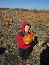 Pumpkin Patch Near Pensacola Florida by Family Friendly Outdoor Activities In Omaha Military Town Advisor