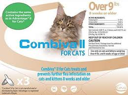 flea treatment for cats combiva ii spot on flea for cats free shipping countrysidepet