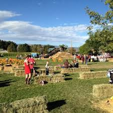 Pumpkin Patch Colorado Springs 2015 by Diana U0027s Pumpkin Patch U0026 Corn Maze 23 Photos Pumpkin Patches