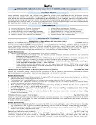 Executive 4n 1 18 Leadership Resume