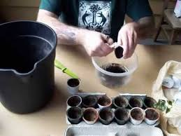 How To Recycle K Cups For Use In Urban GardeningMOV