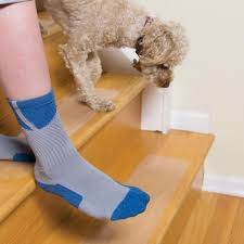 Dog Socks For Hardwood Floors Petco by Amazon Com Puppy Treads Self Adhering Non Slip Tread 4 Pack 6