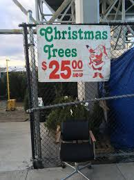 Rite Aid Small Christmas Trees by Where Can I Buy A Christmas Tree In Bay Ridge 11209