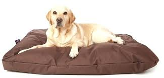 Chew Resistant Dog Bed by Dog Bed Chew Proof U2013 Restate Co