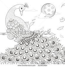 Printable Peacock Mandala Coloring Page