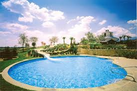 Photo And Pool By Robertson Pools Coppell Texas