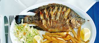 As Far Rats Go There Are No Studies On Their Nutritional Value Since Few Humans Make A Habit Of Dining The Rodents But I Suspect Tilapia Tastes
