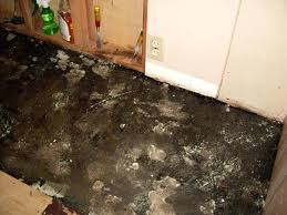 Removing Asbestos Floor Tiles Uk by Removing Asbestos Floor Tiles Image Collections Home Flooring Design