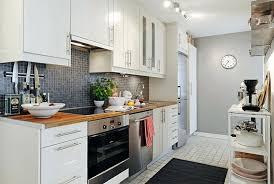Apartment Kitchen Decorating Ideas Contemporary Cabis
