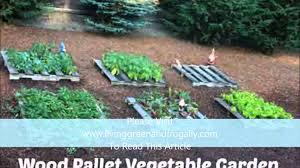 Wood Pallet Vegetable Gardening