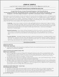 Senior Executive Resume Examples Beautiful Database Management Luxury Resumes For
