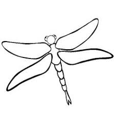 Animal Coloring Dragonfly Pages Of Animals Free FreeFull Size Image