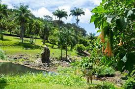 McBryde Garden Picture of McBryde Garden Poipu TripAdvisor