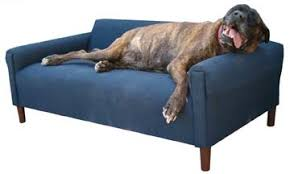 The Modern Dog Sofa Bed – Orthopedic – Small to XXL