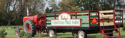 Christmas Tree Shop Salem Nh by Exley U0027s Christmas Tree Farms