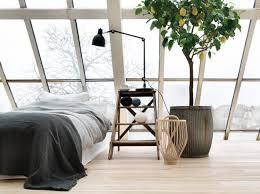 Modern Bedroom Design With Large Windows And Light Wood Floor Decorating Salvaged Furniture Planter Lemon Tree