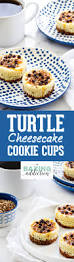 Bisquick Pumpkin Pie Cheesecake by Turtle Cheesecake Cookie Cups My Baking Addiction