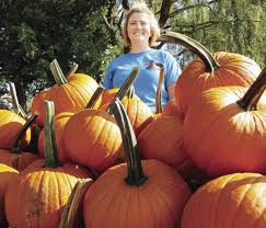 Pumpkin Patch Northwest Arkansas by Pumpkin Farm Is Open For Picking News Agrinews Pubs Com