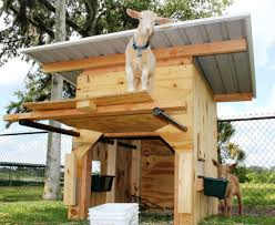Images About Goats On Pinterest Goat Playground House And Shelter ... Outstanding Goat Housing Plans Ideas Best Inspiration Home Building A Barn Part 2 Such And 25 Barn Ideas On Pinterest Pen And Nail Blog April 2015 10x12 With 8x10 Openair Loafing Area I Like This Because It Pasture Dairy Info Your Online Shed Designs Beautiful Garden Package Surprising Gallery Idea Design Stalls For Goats Goat Houses Play Weddings And Other Events At Khimaira Farm