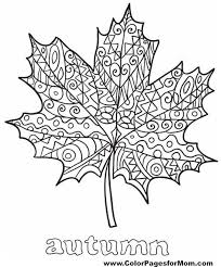 Advanced Leaves Coloring Page 35 Design Kids