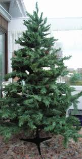 7ft Fibre Optic Christmas Tree Argos by Tree Branches Local Classifieds For Sale In The Uk And Ireland