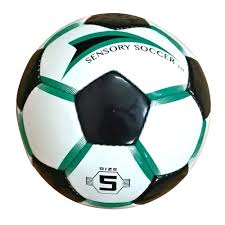 Safco 4750 Zenergy Ball Chair by Sensory Soccer Ball Soccer Ball Adapted Physical Education And