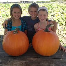 Best Pumpkin Patch Near Corona Ca by 10 Pick Your Own Pumpkin Picking Patch In Orange County Oc Mom Blog
