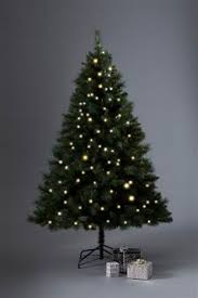 6ft Christmas Tree Nz by Buy Christmas Home Christmas Trees Green Christmastrees From The