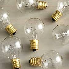 pack of 25 glass globe light bulbs clear g40 size