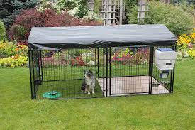 4' Tall Ultimate Dog Kennel Whosale Custom Logo Large Outdoor Durable Dog Run Kennel Backyard Kennels Suppliers Homestead Supplier Sheds Of Daytona Greenhouses Runs Youtube Amazoncom Lucky Uptown Welded Wire 6hwx4l How High Should My Chicken Run Fence Be Backyard Chickens Ancient Pathways Survival School Llc Diy House Plans Deck Options Refuge Forums Animal Shelters The Barn Raiser In Residential Industrial Fencing Company