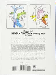Web Art Gallery Coloring Book Anatomy