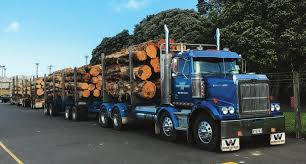 NZ Trucking. Rigs Of 2007