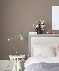 brown wall colors pilotproject org