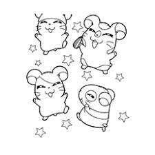 The Hamsters With Stars