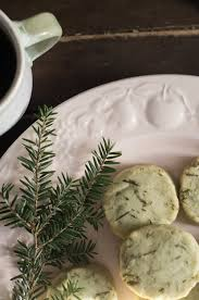 Dill Pickle On The Christmas Tree by O Christmas Tree Pine Needle Rosemary Shortbread U2014 Down Home