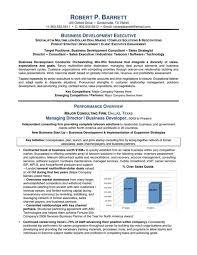 Business Development Executive Resume Template