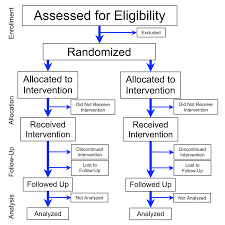 Randomized Experiment Wikipedia