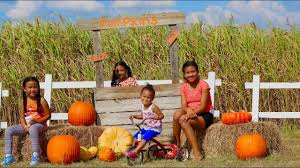 Live Oak Pumpkin Patch 2017 by Welcome Fall Corn Mazes And Pumpkin Patch Youtube