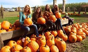 Pumpkin Patches In Bakersfield Ca by A Bucket List For All Fall Lovers