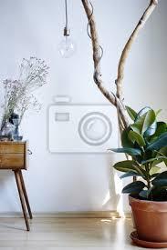 fototapete lebendige sonnige atmosphäre wohnzimmer dekoration pflanzen schrank