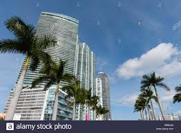100 Miami Modern Buildings Along Biscayne Boulevard Downtown