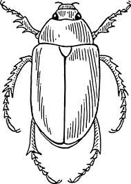 Bug Clip Art at Clker vector clip art online royalty free
